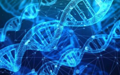 DNA Activation: Rediscovering the Hidden Power of Your Ancestors